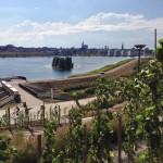 Phoenixsee-Dortmund-Segway-Tour